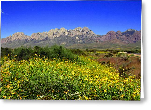 Las Cruces Landscape Greeting Cards - View from Dripping Springs Rd Greeting Card by Kurt Van Wagner