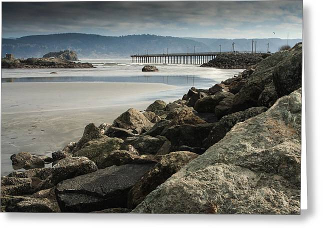 Recently Sold -  - Surf City Greeting Cards - View from the Beach Greeting Card by Betty Depee