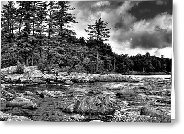 White River Greeting Cards - View from the Rocks of the Moose Greeting Card by David Patterson