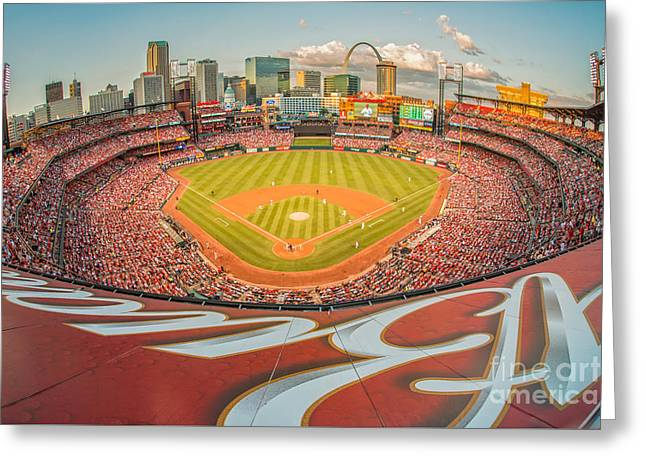 Baseball Stadiums Greeting Cards - View from the Top Greeting Card by Anne Warfield