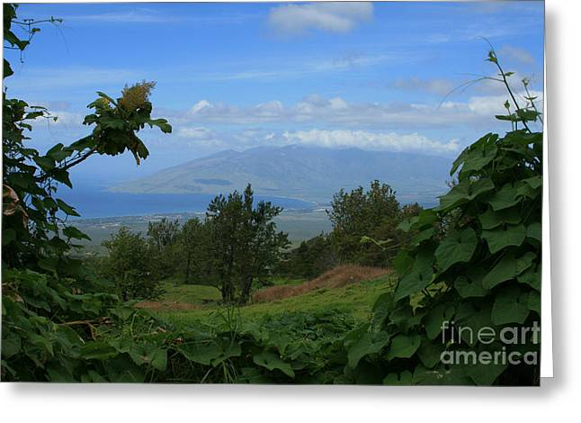 Ourjrny Greeting Cards - View of Mauna Kahalewai West Maui from Keokea on the western slopes of Haleakala Maui Hawaii Greeting Card by Sharon Mau