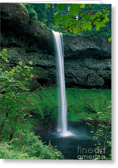 Howell Greeting Cards - View Of Oregon Greeting Card by Michael Howell - Printscapes