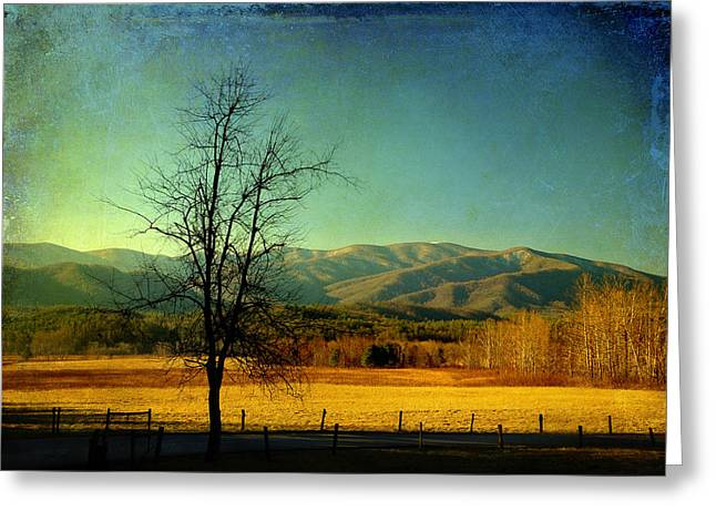 View Of The Smokies Greeting Card by Mike Eingle