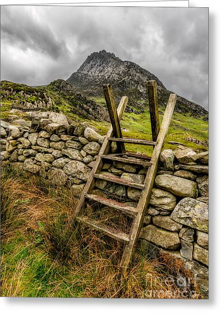 Stone Steps Greeting Cards - View Of Tryfan  Greeting Card by Adrian Evans