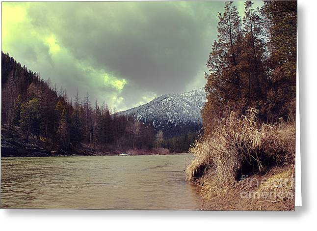 View On The Blackfoot River Greeting Card by Janie Johnson