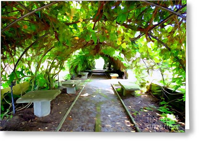 Abstract Digital Photographs Greeting Cards - Vine Covered Archway #1 Greeting Card by Ed Weidman