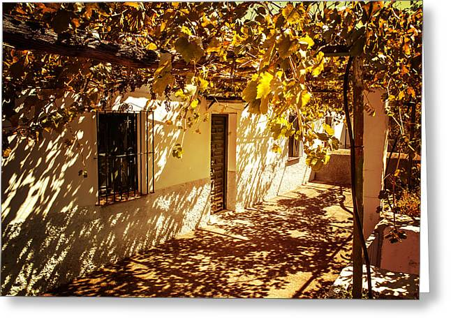 Vineyard Art Greeting Cards - Vine-Covered Patio. Andalusia. Spain Greeting Card by Jenny Rainbow