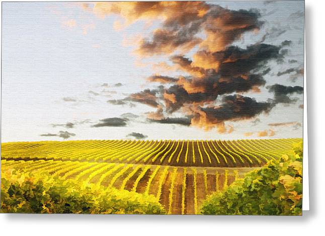 Vineard Aglow Greeting Card by Sharon Foster