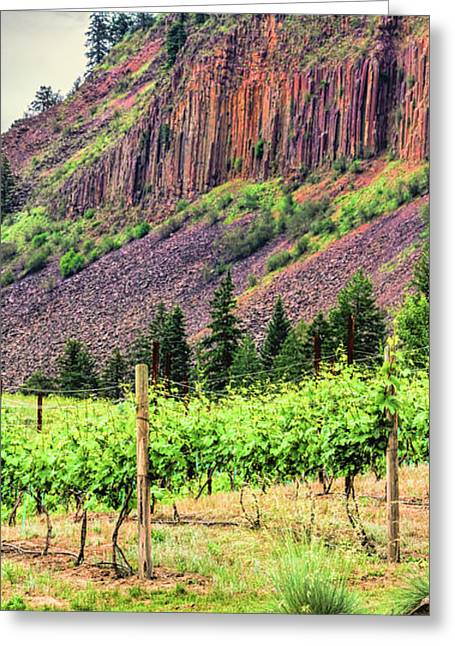 Blue Grapes Greeting Cards - Vineyard Cliffs Greeting Card by Jean OKeeffe Macro Abundance Art
