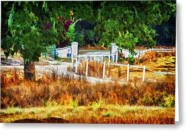Vineyard Gate Greeting Card by Patricia Stalter