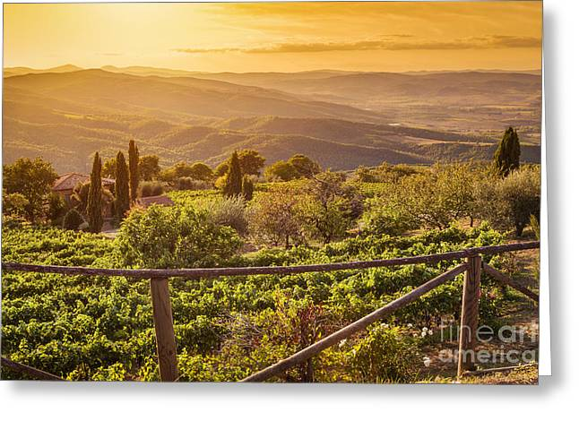 Vineyard Landscape In Tuscany, Italy. Wine Farm At Sunset Greeting Card by Michal Bednarek
