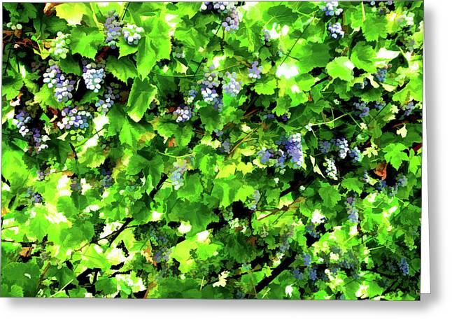 Vineyard Greeting Card by Lanjee Chee