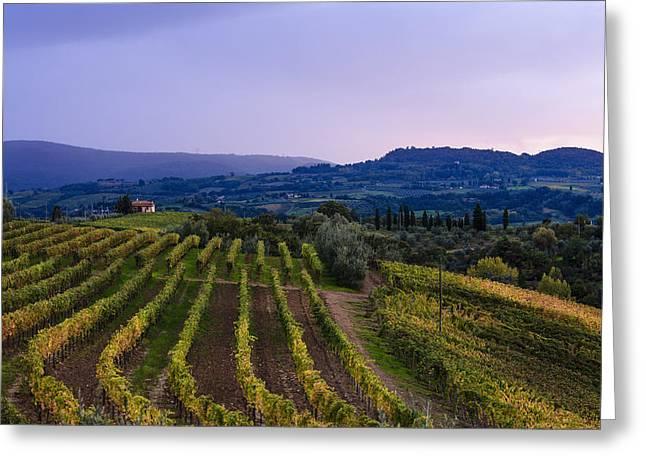 Italian Sunset Greeting Cards - Vineyard, Near Ulignano  Tuscany, Italy Greeting Card by Yves Marcoux