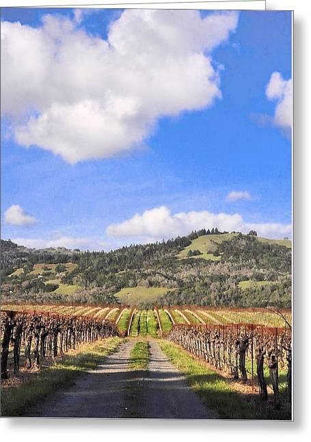 Grape Vineyard Greeting Cards - Vineyard Road Greeting Card by Josephine Buschman