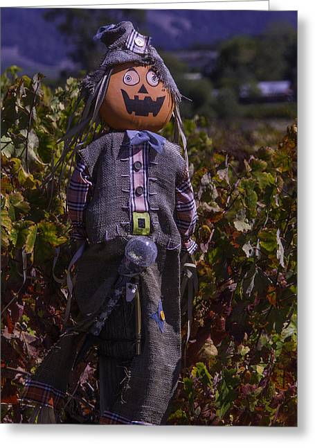 Vineyard Scarecrow Greeting Card by Garry Gay