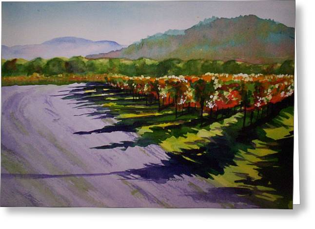 Red Wine Prints Greeting Cards - Vineyard Shadows Greeting Card by Becky Chappell