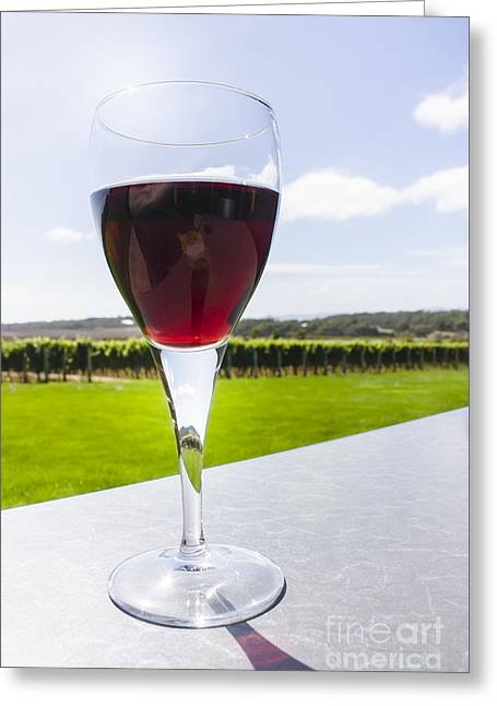 Color Tour Greeting Cards - Vineyard wine glass filled with red shiraz Greeting Card by Ryan Jorgensen