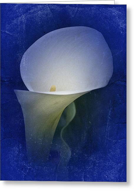 Calla Lily Greeting Cards - Vintage Calla Lily in Blue Greeting Card by Richard Cummings