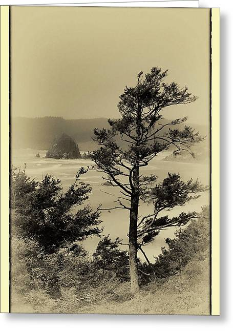 Monolith Greeting Cards - Vintage Cannon Beach Greeting Card by David Patterson