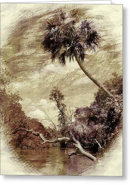 Divorce Greeting Cards - Vintage Florida Landscape Greeting Card by Sheri McLeroy