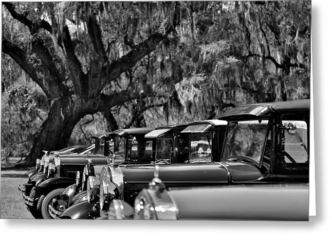 Recently Sold -  - Moss Greeting Cards - Vintage Ford Line-up at Magnolia Plantation - Charleston SC Greeting Card by Donnie Whitaker