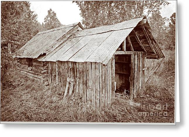 Log Cabins Greeting Cards - Vintage Iditarod Trail Shelter Cabins Greeting Card by John Stephens