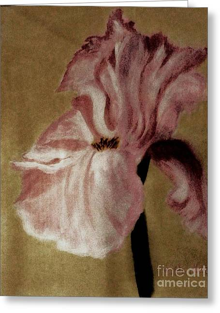 Vintage Iris Greeting Card by Marsha Heiken