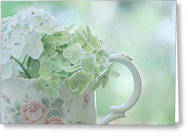 Soft Light Greeting Cards - Vintage Pitcher Greeting Card by Bonnie Bruno