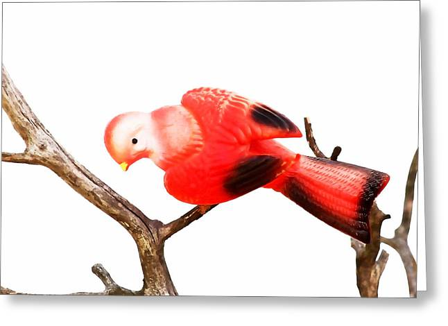 Christmas Blocks Greeting Cards - Vintage Red Bird Greeting Card by Art Block Collections