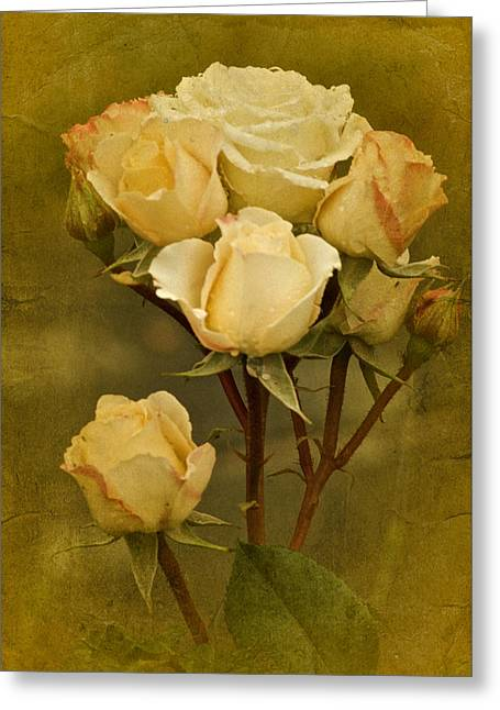Enhanced Greeting Cards - Vintage Tea Roses Greeting Card by Richard Cummings