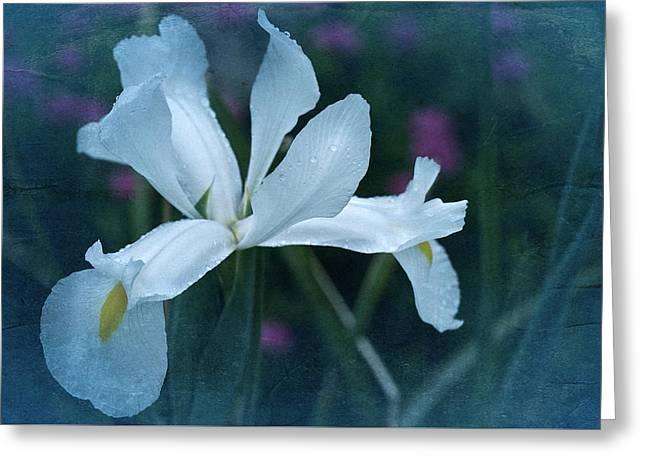 Enhanced Greeting Cards - Vintage White Iris 2015 Greeting Card by Richard Cummings