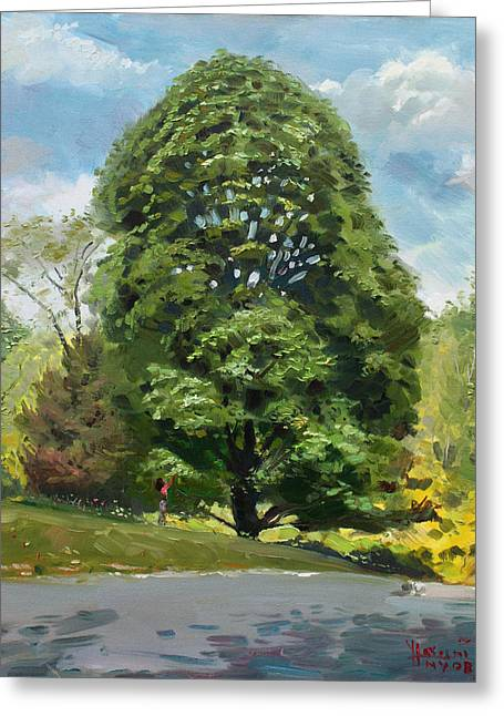 Upstate Paintings Greeting Cards - Viola s Tree Greeting Card by Ylli Haruni
