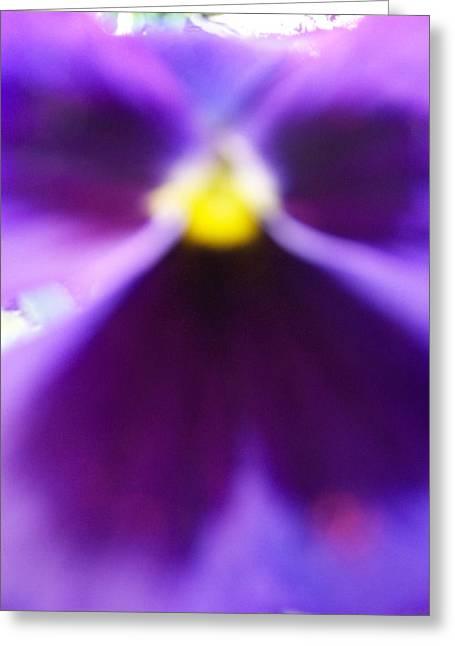 Purple Chakra Greeting Cards - Violet Aura Greeting Card by Vijay Sharon Govender