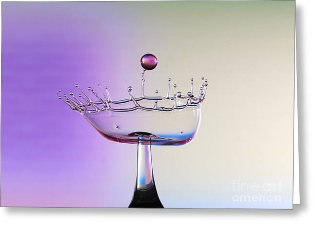 Print Photographs Greeting Cards - Violet Berry Greeting Card by Heidi Southworth