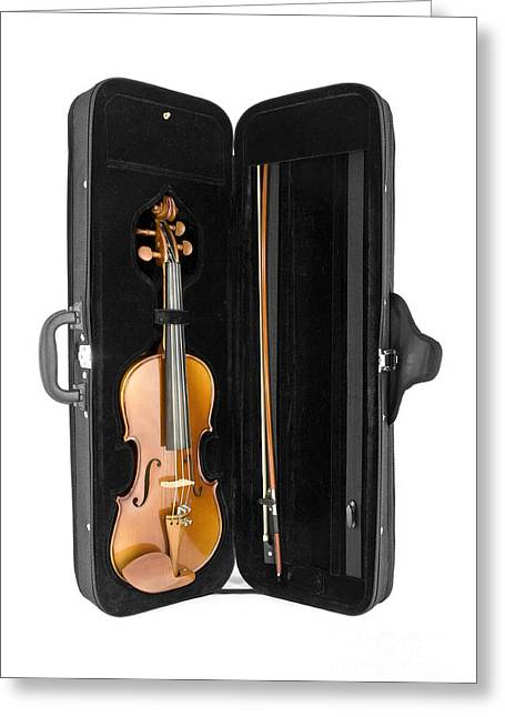 Violin Case Greeting Cards - Violin in its case posed to the vertical Greeting Card by Gregory DUBUS