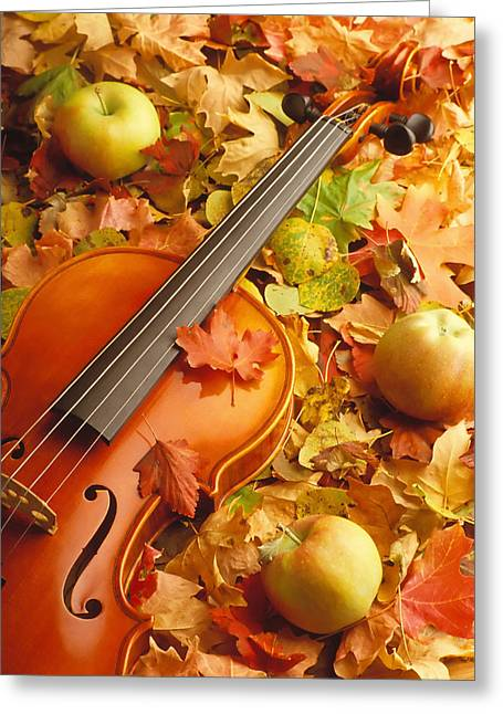Fall Photographs Greeting Cards - Violin with Fallen Leaves Greeting Card by Utah Images