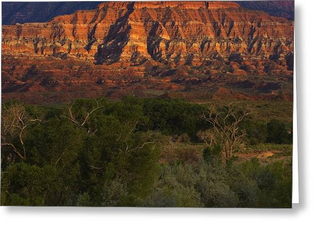 Virgin River near Zion National Park Greeting Card by Utah Images