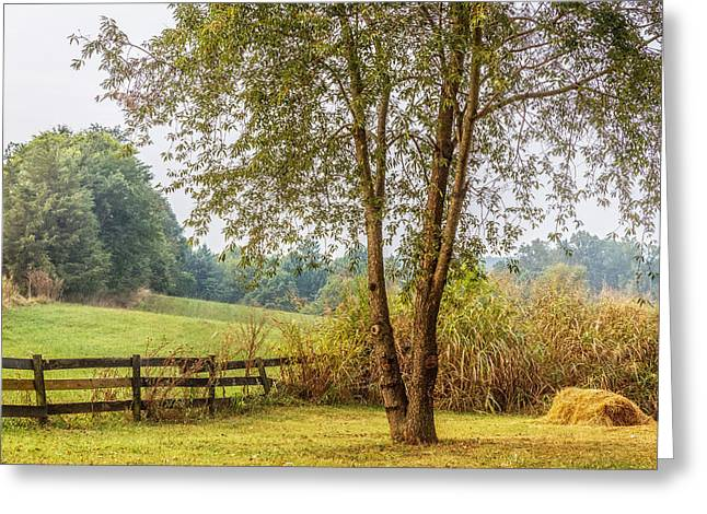 Warm Tones Greeting Cards - Virginia Countryside Greeting Card by Ann Flugge