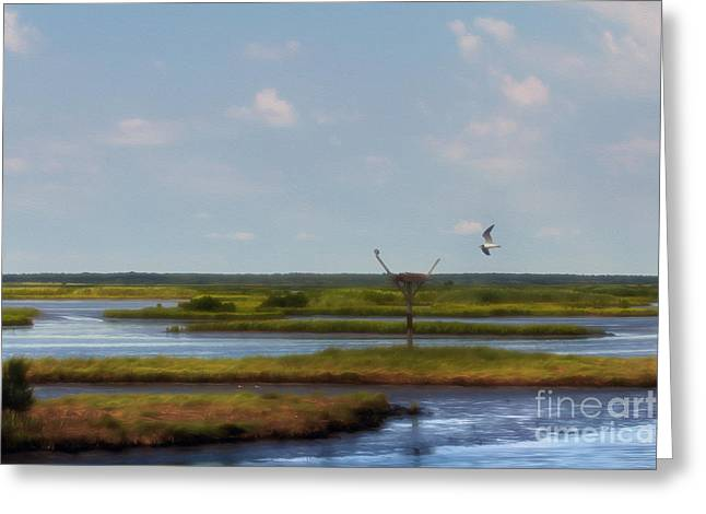 Wildlife Refuge. Greeting Cards - Visiting a Neighbor Greeting Card by Tom Gari Gallery-Three-Photography