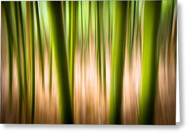 Smear Greeting Cards - Vitality - Abstract Panning Bamboo Landscape Photography Greeting Card by Dave Allen