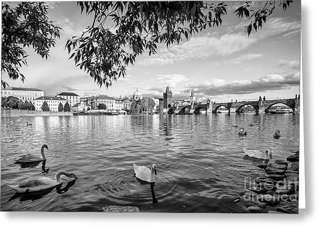 Vltava View Greeting Card by Dennis Hedberg