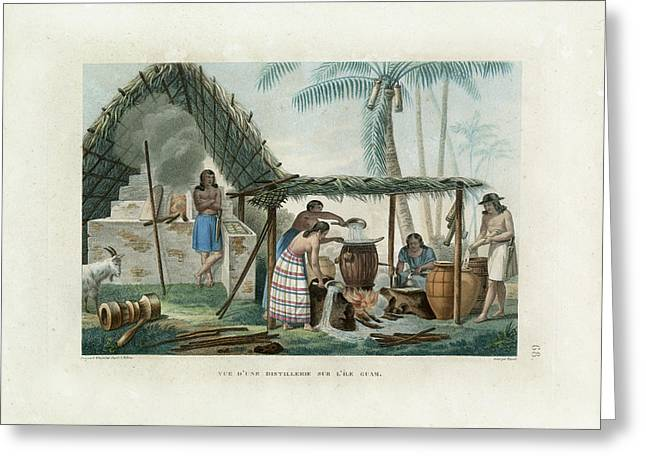 Vue Dune Distillerie Sur L Ile Guam Distillery Scene On Guam Greeting Card by d Apres A Pellion
