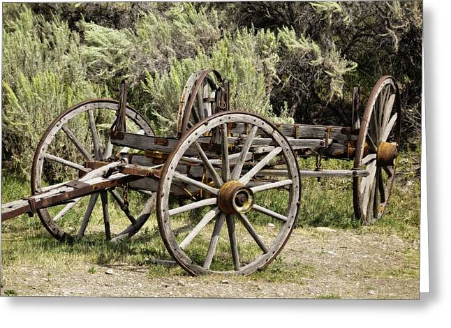 ist Photographs Greeting Cards - Wagon Rides Greeting Card by Image Takers Photography LLC - Laura Morgan