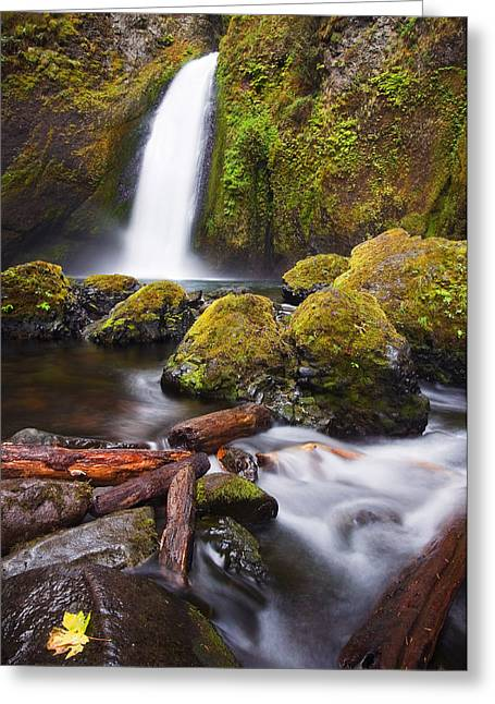 Oregon Landscapes Greeting Cards - Wahclella Greeting Card by Mike  Dawson