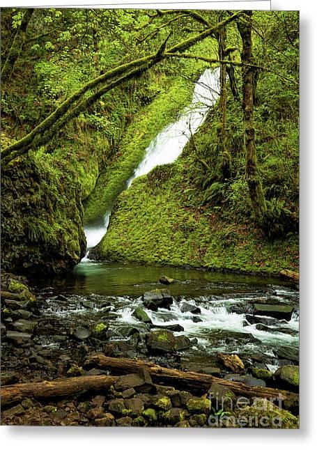 Oregon Greeting Cards - Wahkeena Falls Greeting Card by Jon Burch Photography