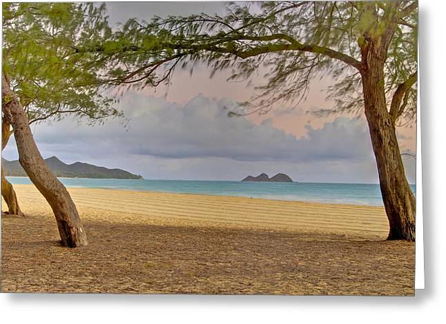 Peychich Greeting Cards - Waimanalo Beach Greeting Card by Michael Peychich
