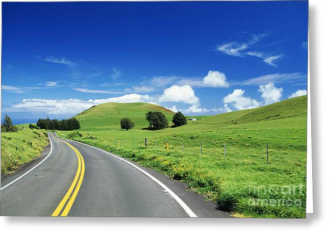 Pastureland Greeting Cards - Waimea Ranch Land Greeting Card by Bob Abraham - Printscapes