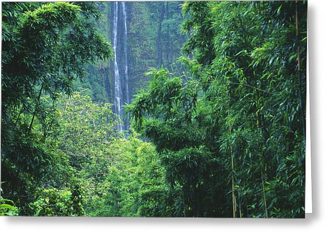 Waimoku Falls Greeting Card by Dave Fleetham - Printscapes