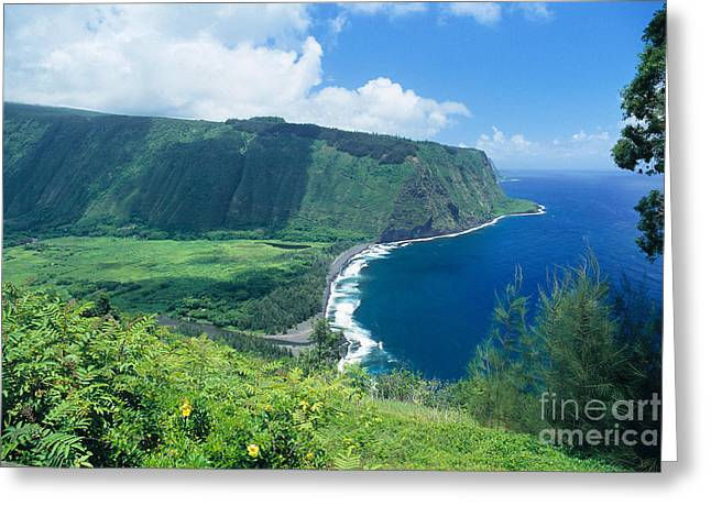 Hamakua Greeting Cards - Waipio Valley Lookou Greeting Card by Greg Vaughn - Printscapes