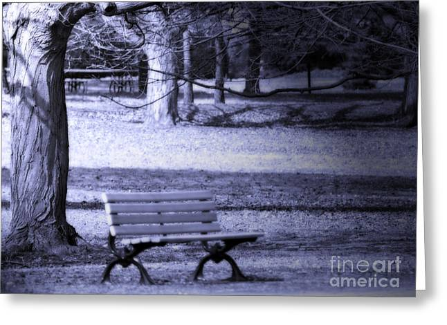 Empty Park Bench Greeting Cards - Waiting Greeting Card by Cathy  Beharriell